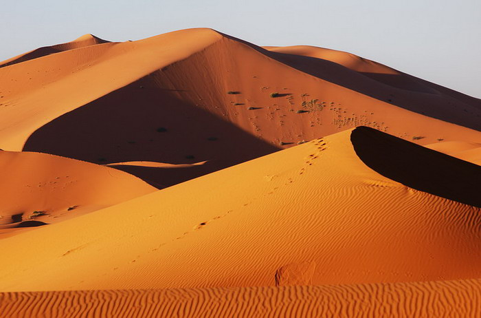 Dunes in Erg Chebbi